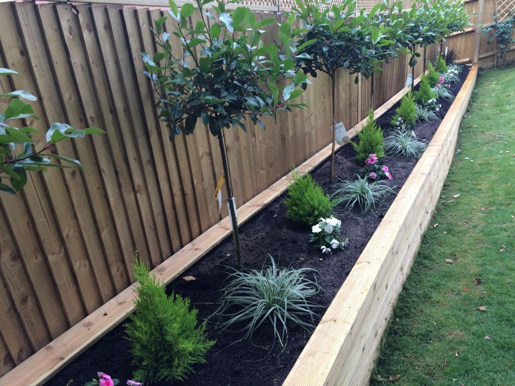 Garden Diy Fence Ideas To Keep Your Plants Red Robin Tree Shrubs
