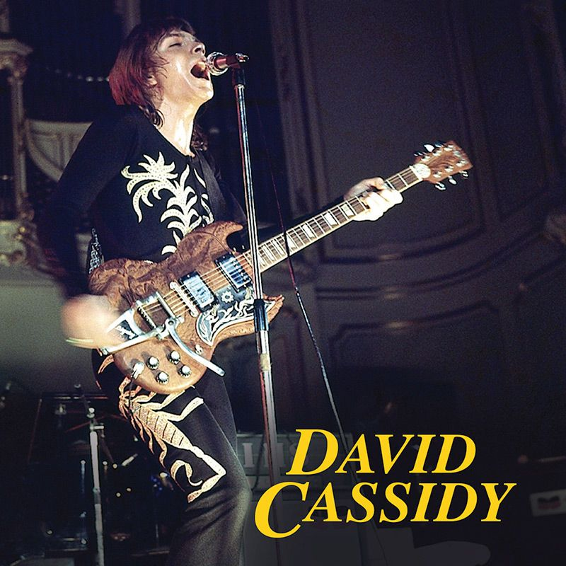 Pins Daddy David Cassidy Ndash I Think Love You Greatest