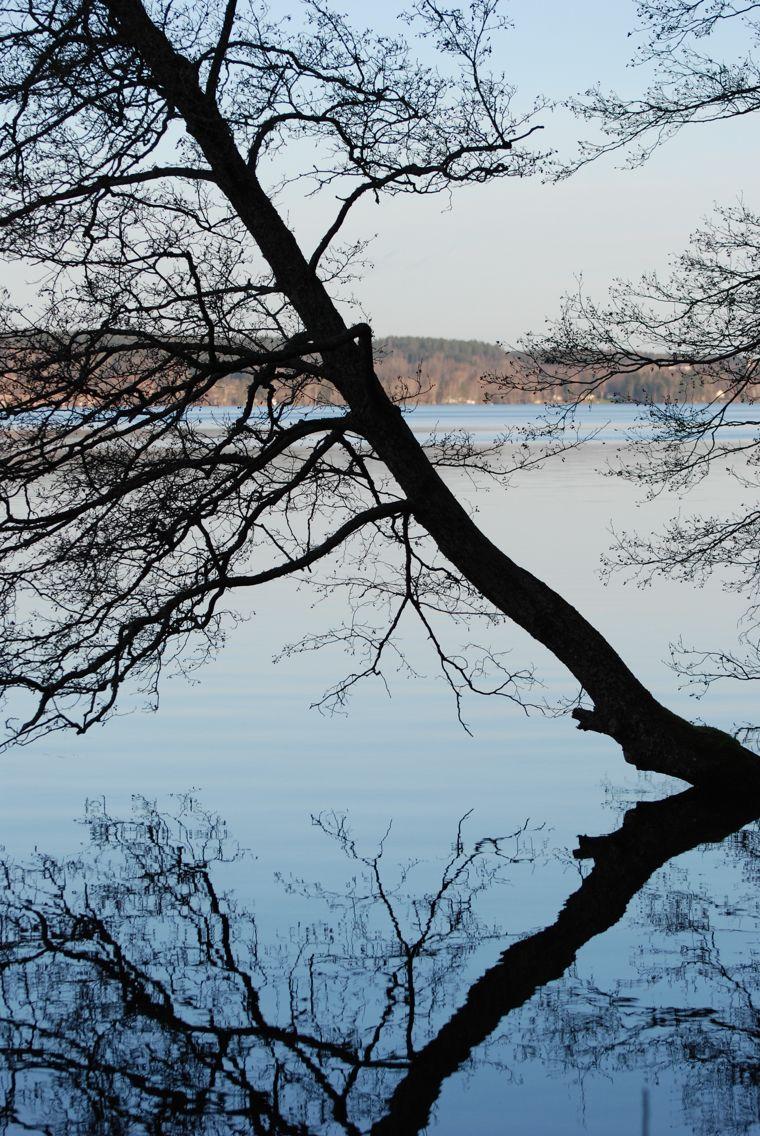 Gillar reflektionen i vattnet