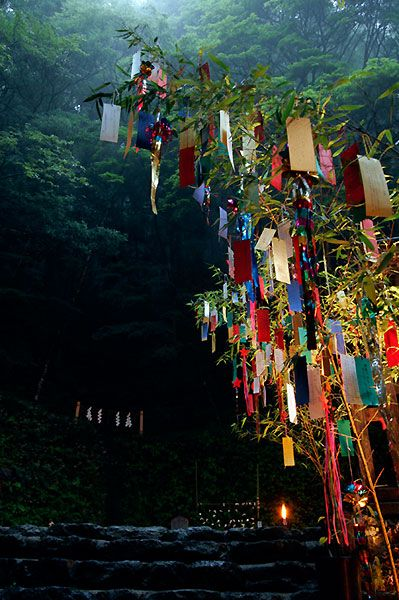 Japan. I want to see this Wishing Tree.