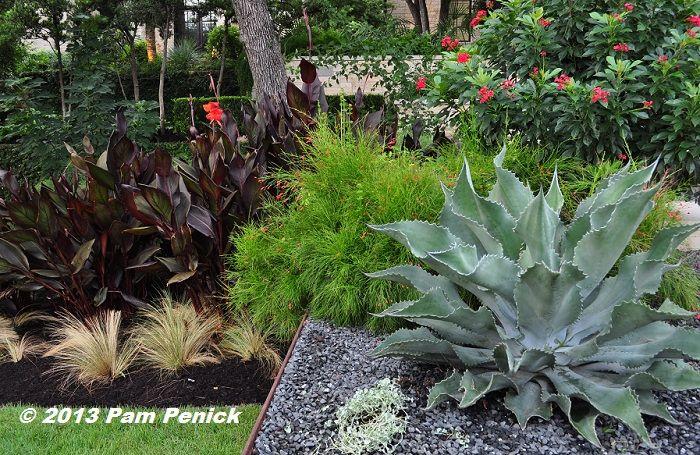 Elegant, contemporary Westlake garden by Sitio Design   Digging ...