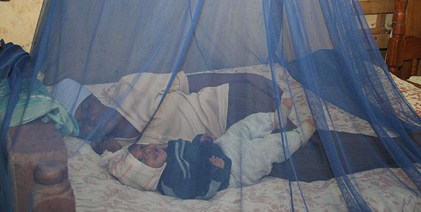 United States, Global Fund distribute 1.7 million nets to prevent malaria in Zimbabwe - http://zimbabwe-consolidated-news.com/2016/10/19/united-states-global-fund-distribute-1-7-million-nets-to-prevent-malaria-in-zimbabwe/