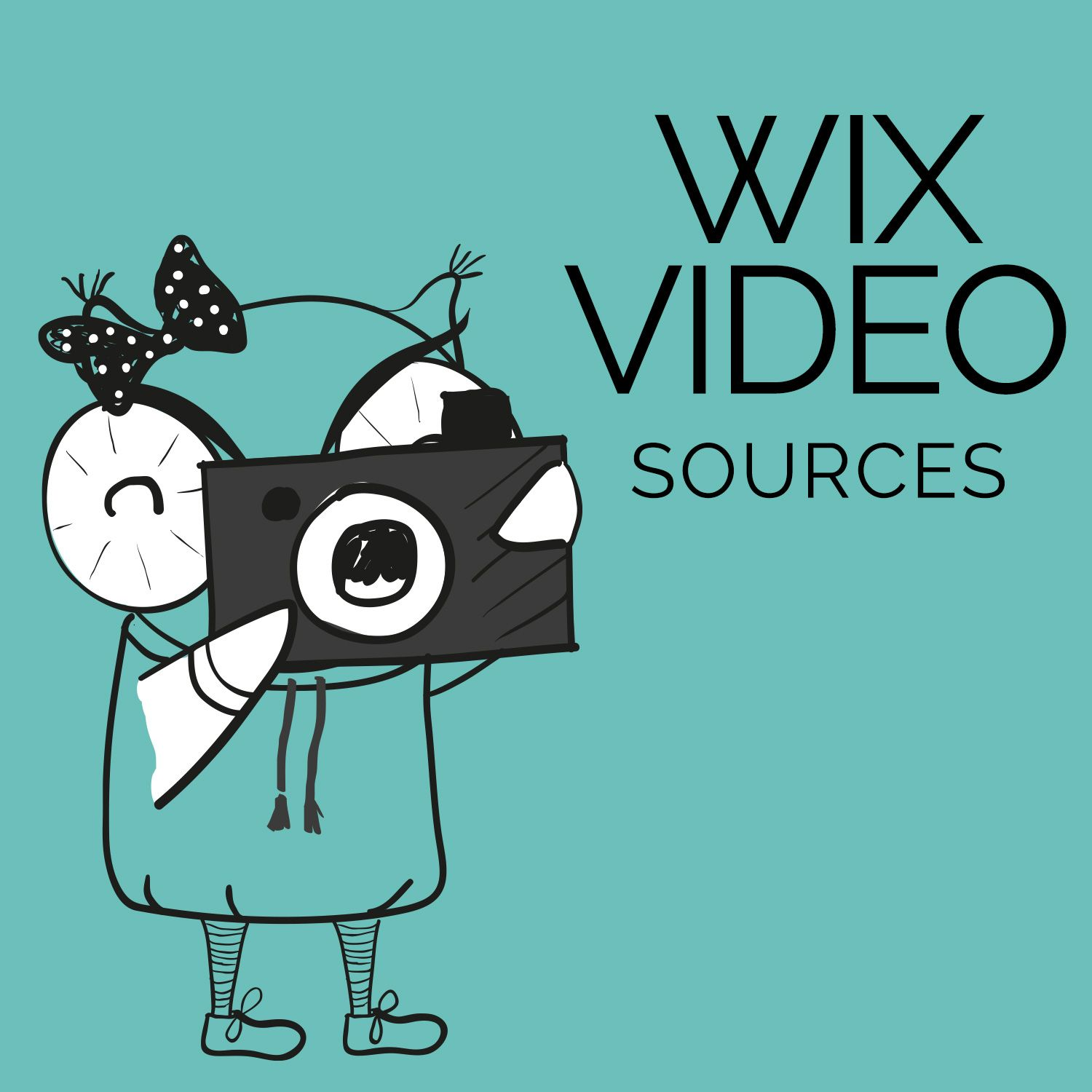 Wix Video sources