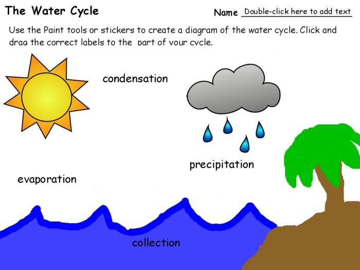 Water Cycle For 2nd Grade Second Grade Water