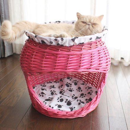 可愛い卵型の猫ちぐら Cantaloupe 卵型 猫ちぐら 猫 可愛い ペット