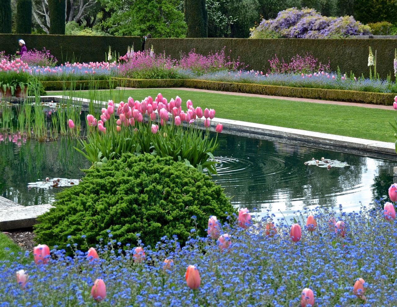 carex: garden design by carolyn mullet | Jardines 23 | Pinterest ...