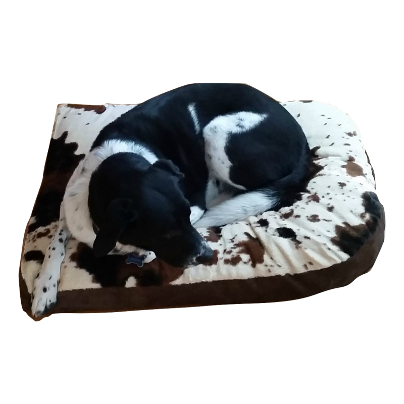 Cuddle Cow Futon Mod Dog Bed Dog boutique, Sleeping
