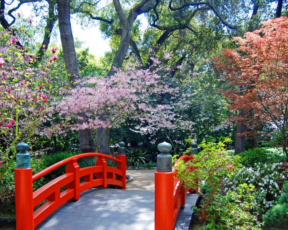 descanso gardens. | l.a. parks | pinterest | japanese tea house
