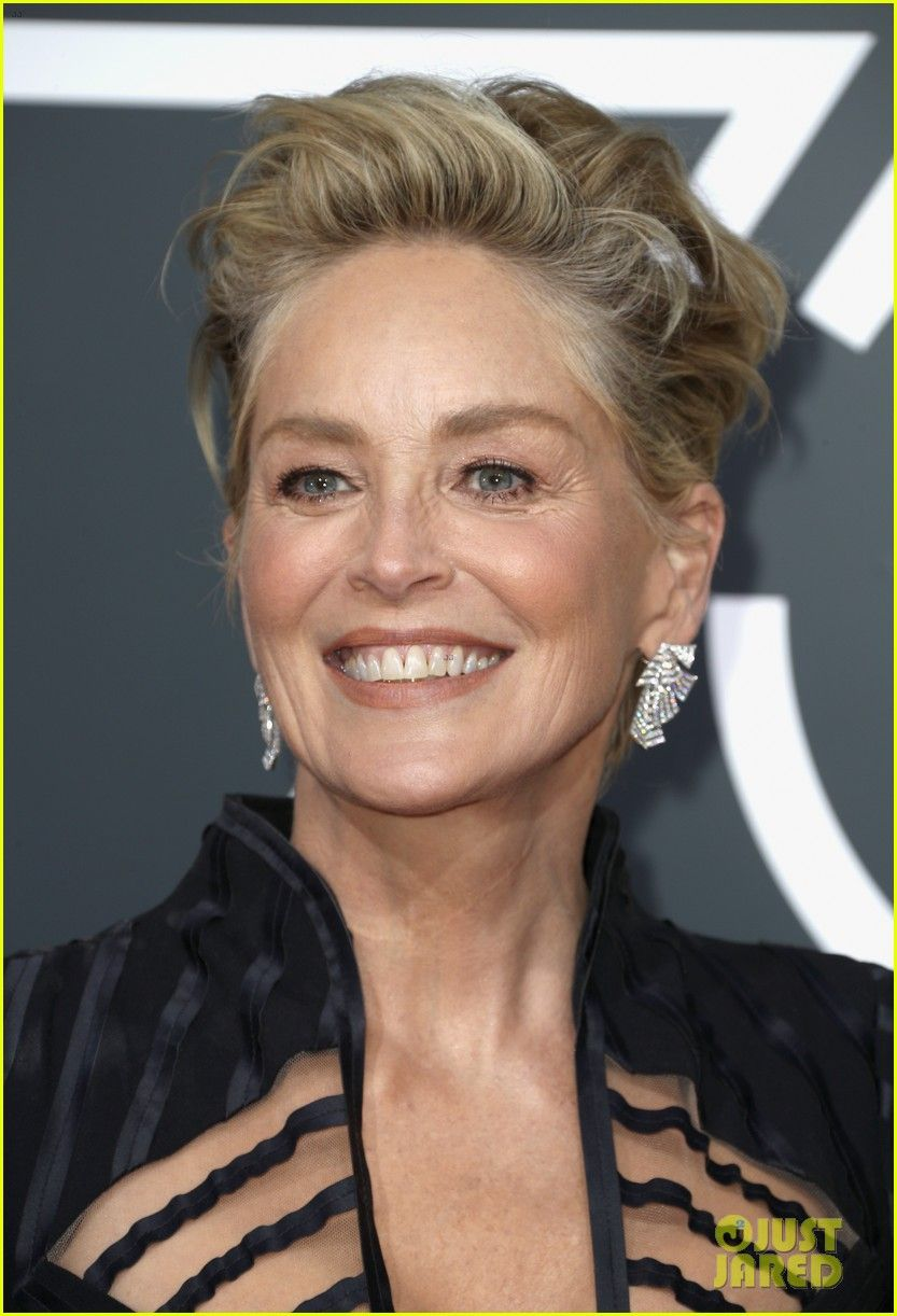 sharon stone hairstyles in 2018 michelle pfeiffer, sharon