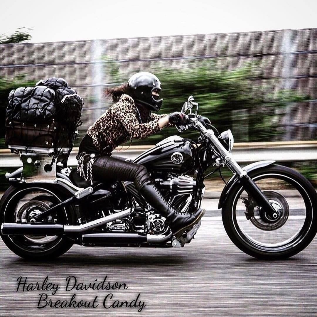 Double Tap And Tag Your Friends Below Credits To The Amazing Owner Harley Davidson Harley New Harley Davidson