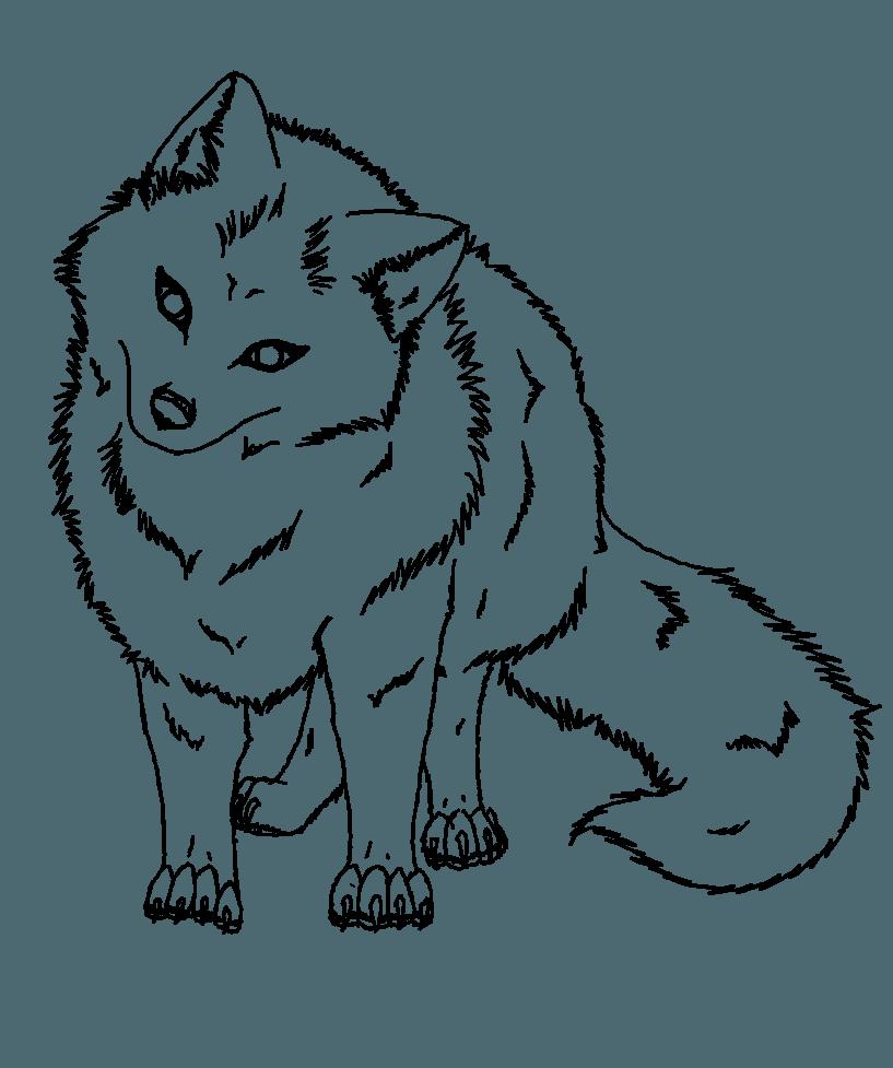 Volpe Artica Libro Da Colorare Disegno Antartide Volpe Artica 817 977 Png Trasparente Scarica Gratis Linea Arte Fauna Libri Da Colorare Volpe Artica Volpe