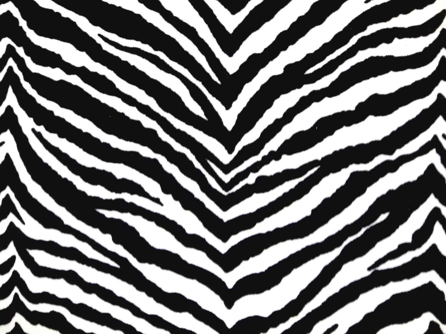 zebra print coloring pages 18 pictures colorine net 17857 - Zebra Print Coloring Pages