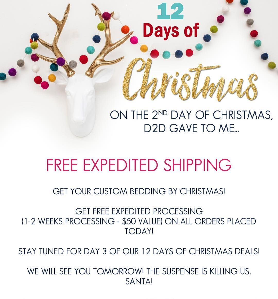 On the 2nd day of Christmas.... Santa gave to YOU - FREE EXPEDITED ...