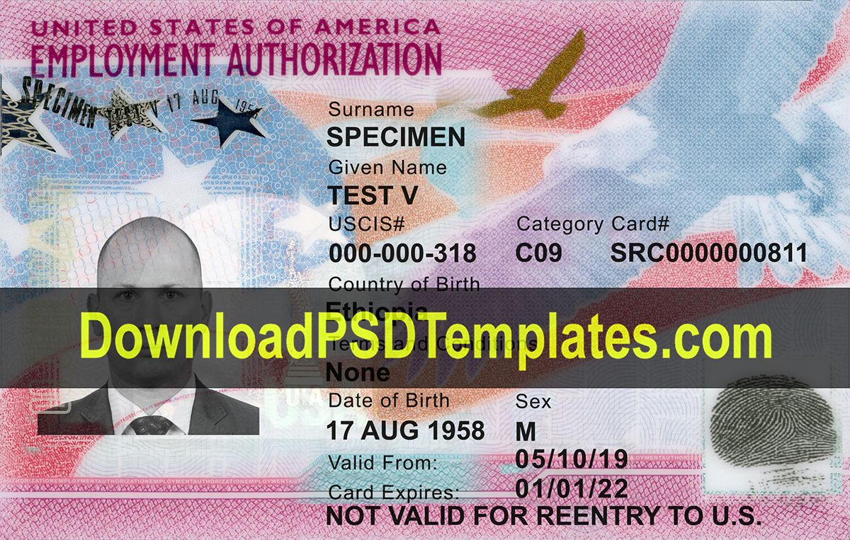 Us Employment Authorization Card Template Ead Psd Card Template Employment Psd Templates