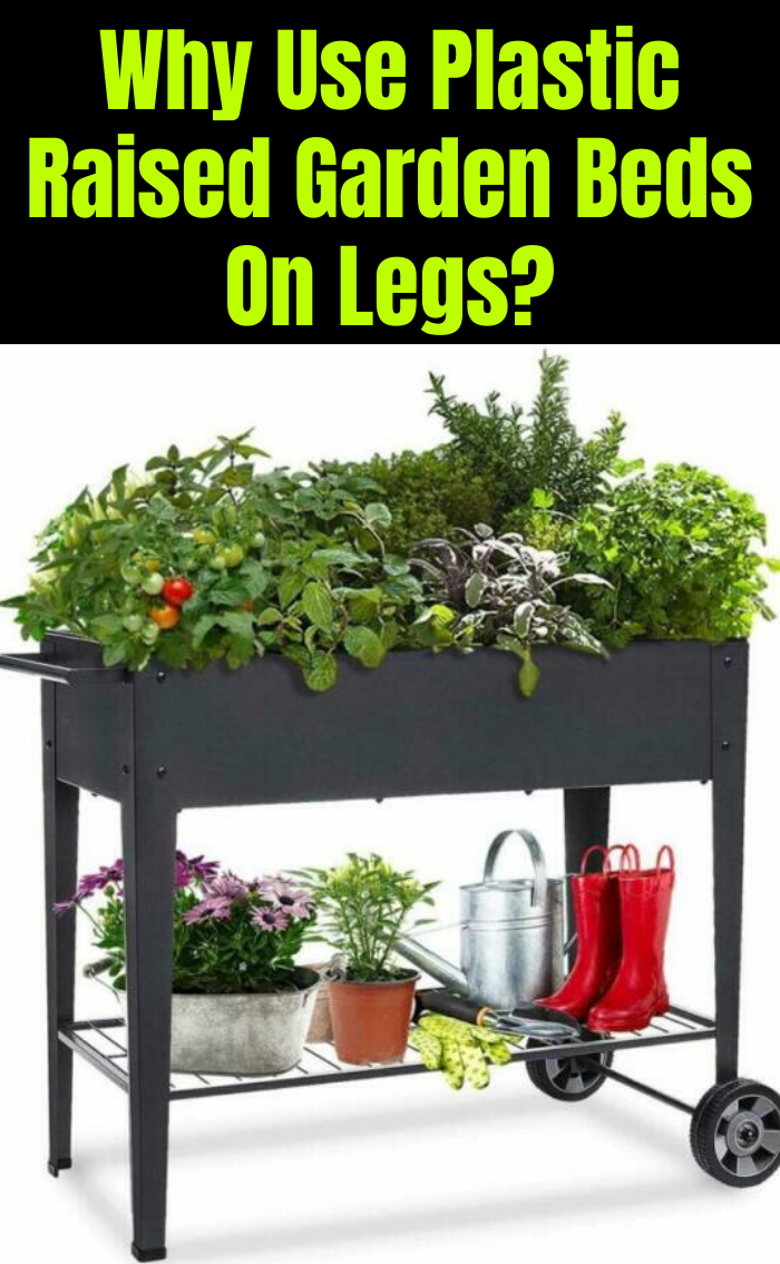Plastic Raised Garden Beds On Legs How To And What To Grow In