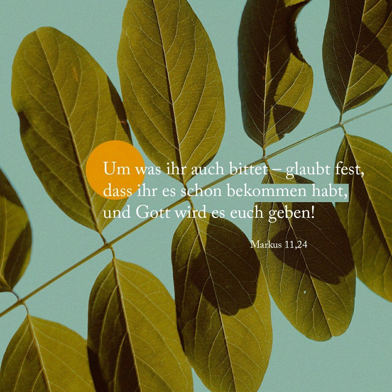 Pin auf Bibelverse