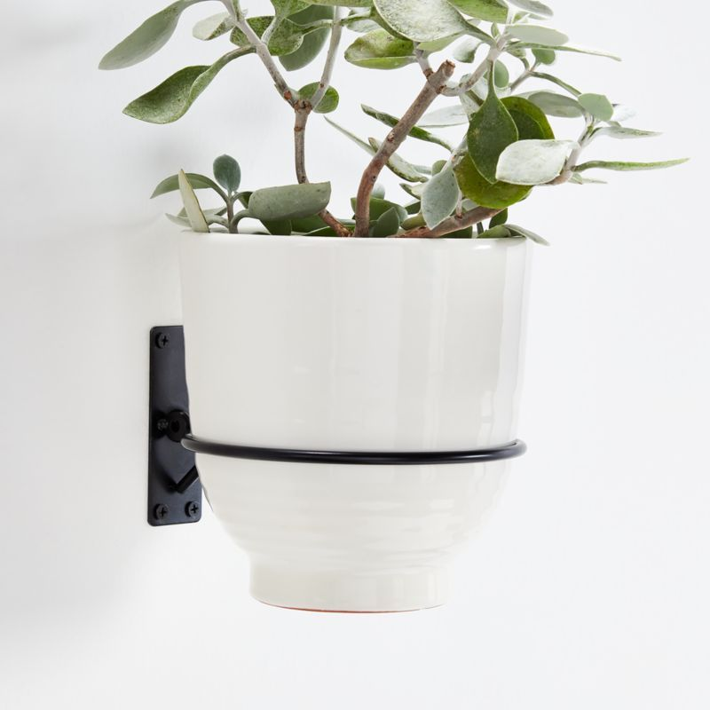 Wall Planter Hook Reviews Crate And Barrel In 2020 Wall Mounted Planters Wall Planter Wall Planters Indoor