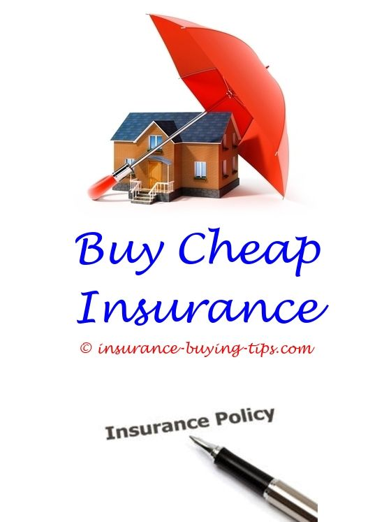 Aaa Auto Insurance Quote Custom Aaa Car Insurance Quote Michigan  Apartment Renters Insurance .