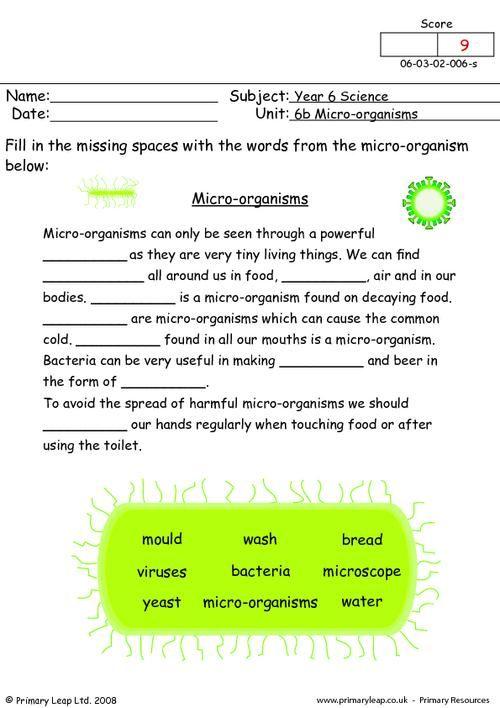 Primaryleap Co Uk Micro Organisms Worksheet Science Worksheets