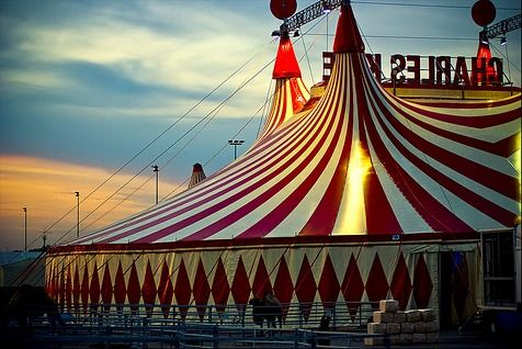 Image result for circus