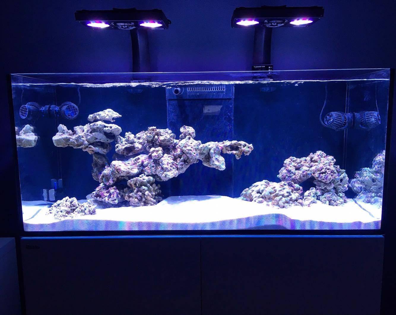 Awesome Rock Work Saltwater Aquarium Fish Saltwater Fish Tanks Aquarium Fish Tank