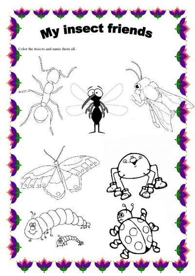 Insects Worksheets Free Insects Worksheet Free Esl Printable Worksheets Made By Teachers Kids Worksheets Printables Preschool Worksheets Math Subtraction Printable insect worksheets for