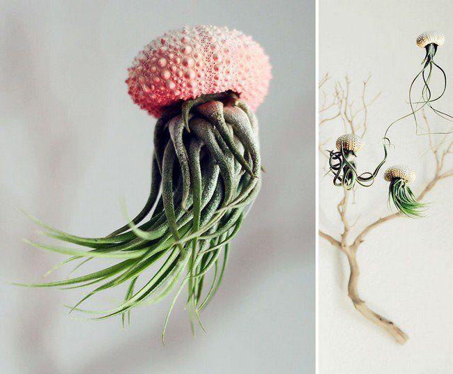 vasos-plantas-criativos-5