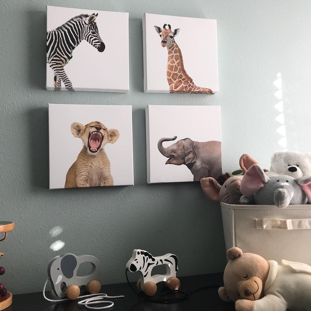 "Sandra Keller on Instagram: ""Reposting this adorable find! Baby Safari Animals on Canvas. I picked up at Homegoods. #homegoods #kidsroom #kidsdecor #kidsroomdecor…"""