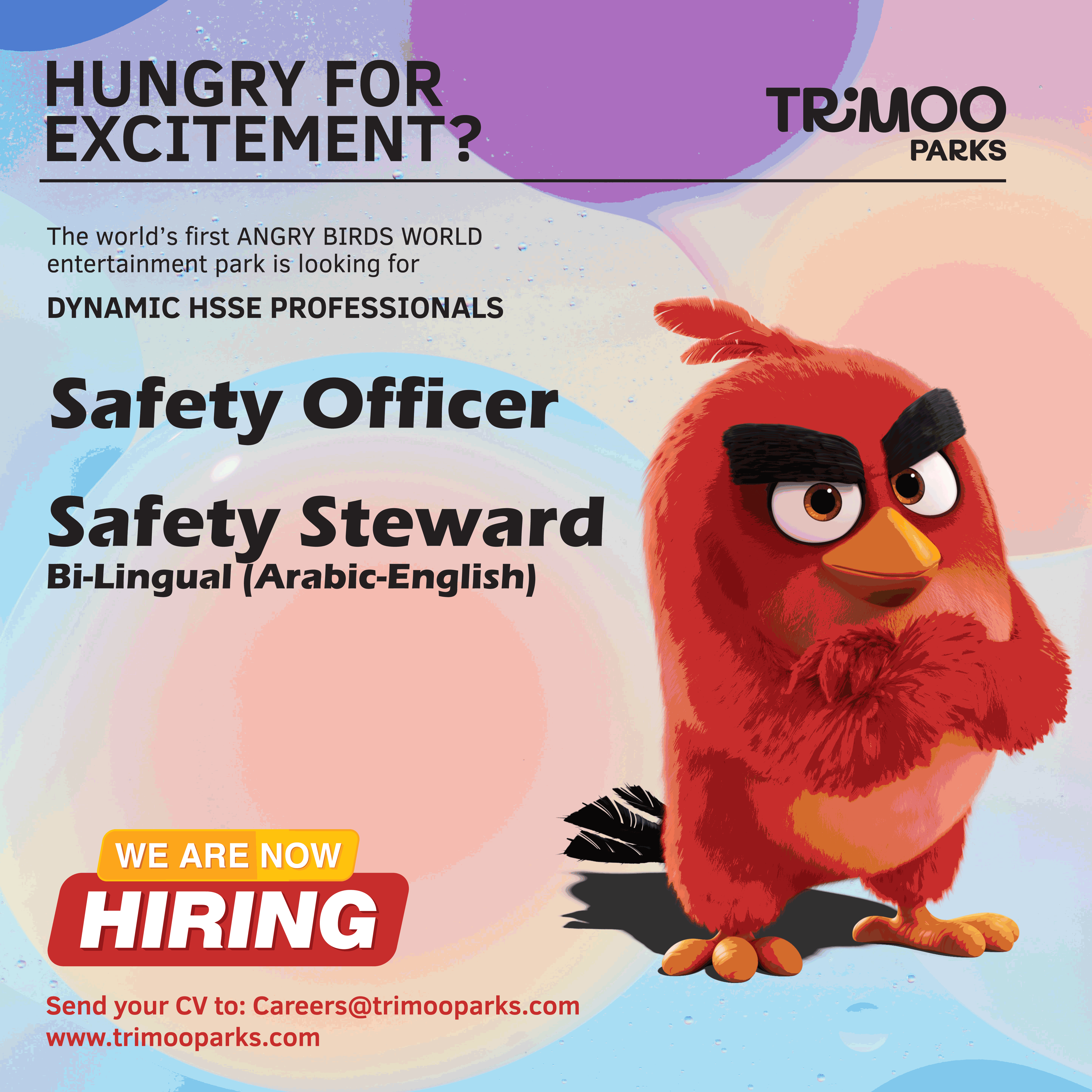 Safety Officer and Steward Qatar Job Openings Job
