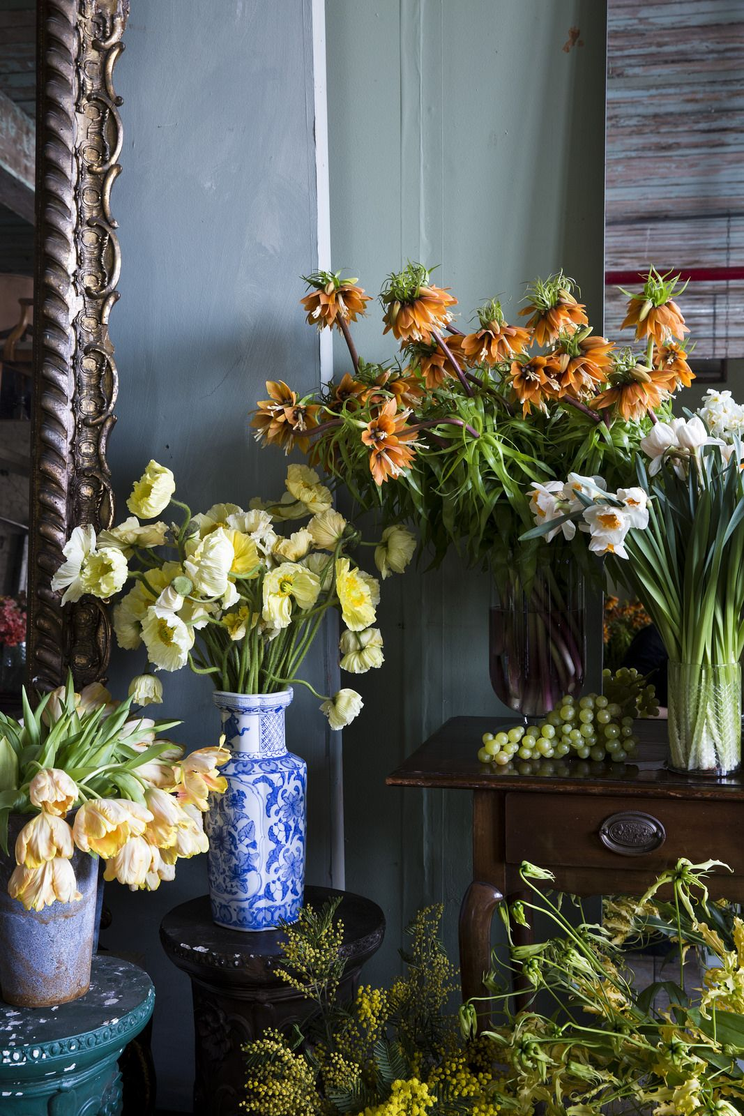 Dutch Masters Flower school, Flowers, Expensive flowers