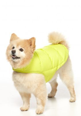 WEATHERPROOF 32 Degrees Scuba Lime Packable Down Dog Coat