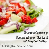 Strawberry Salad with Lettuce, Red Onion, Cucumber and Poppy Seed Dressing