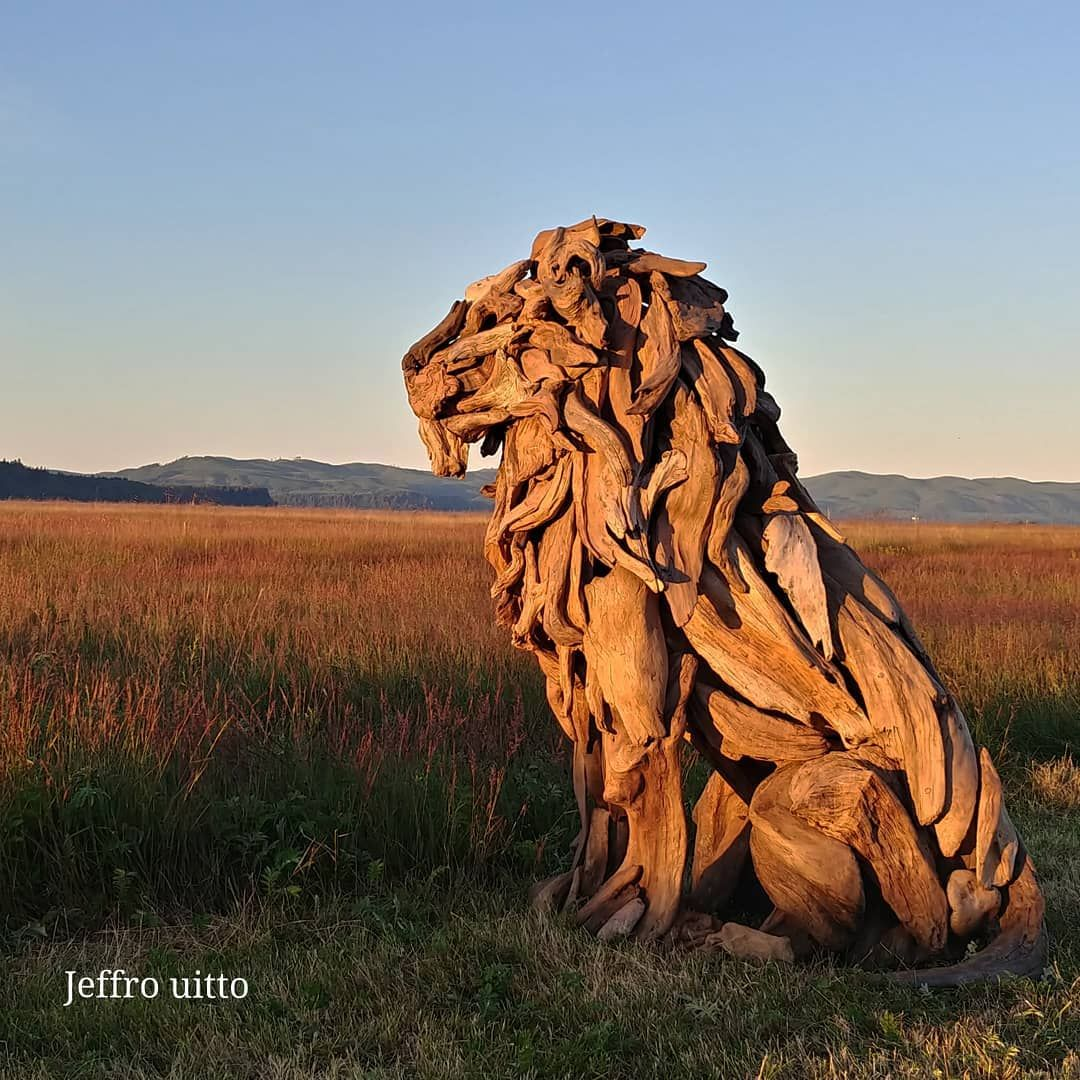 Jeffro Art Salvaged Wood Lion Sculpture Driftwood Sculpture Sculpture Lion Art