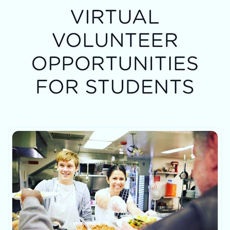 Virtual Volunteering with VolunteerCrowd! in 2020
