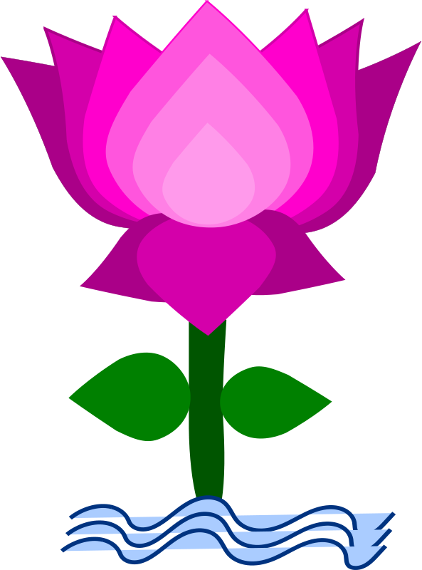clip art lotus flower free google search lotus flowers rh pinterest com lotus flower clipart png lotus flower clipart png