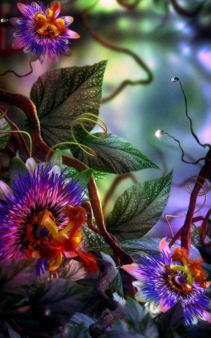 3d Flowers Wallpaper Iphone 8 Digital Flowers Orchid Wallpaper Garden Art Fantastic flower wallpaper 3d