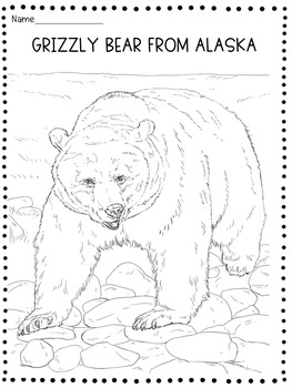 Alaska Reading Comprehension Multiple Choice Questions Tpt Bear Coloring Pages Animal Coloring Pages Coloring Pages