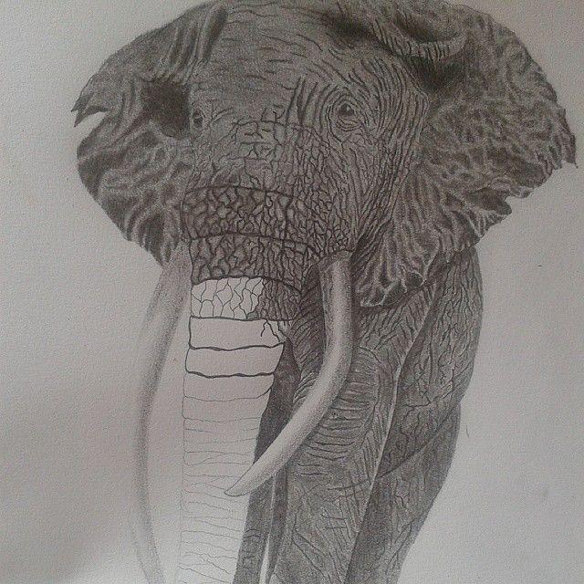 Desenho. Draw. Fábio Habibe.