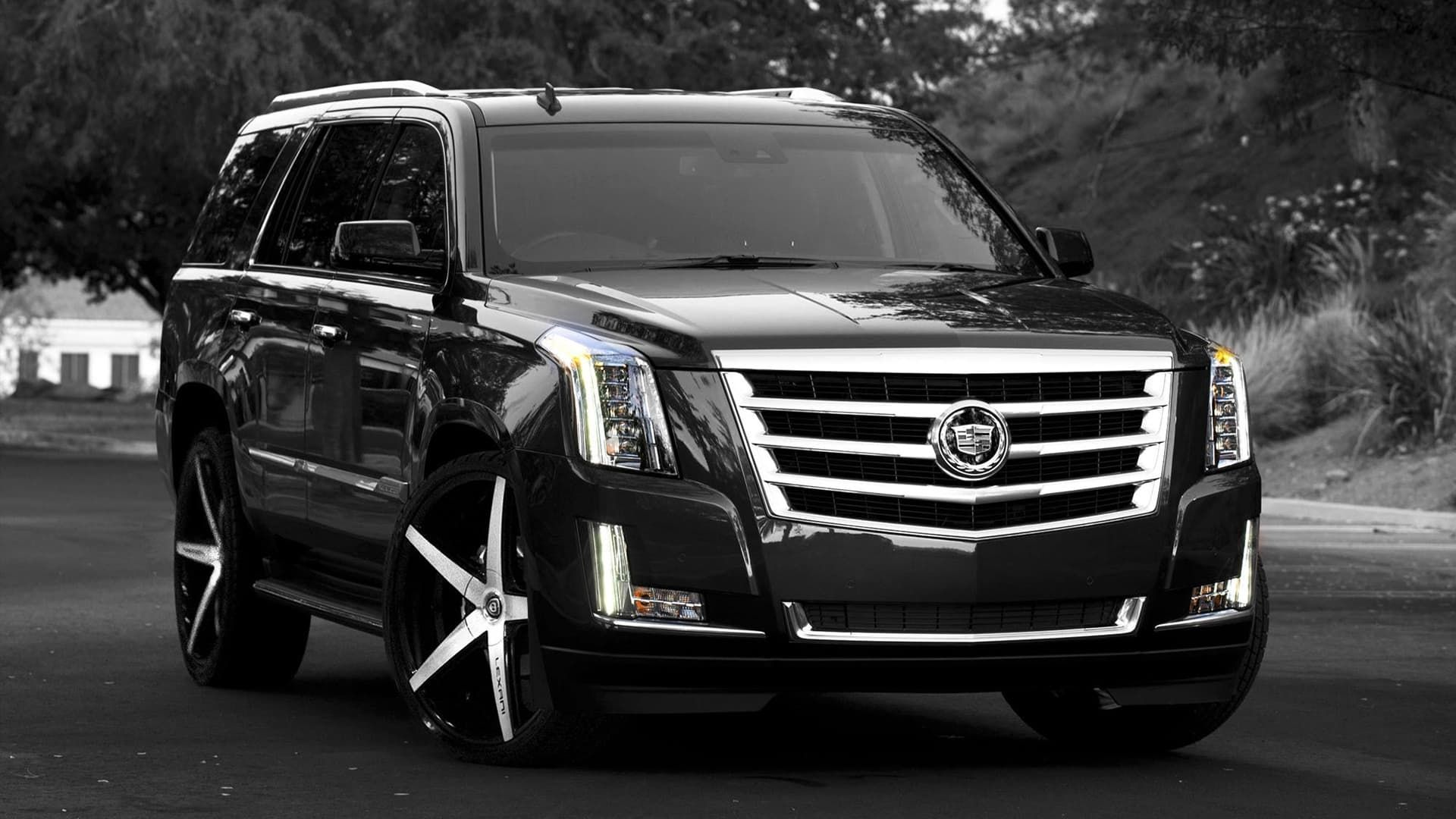 My Favorite Suv Black Escalade