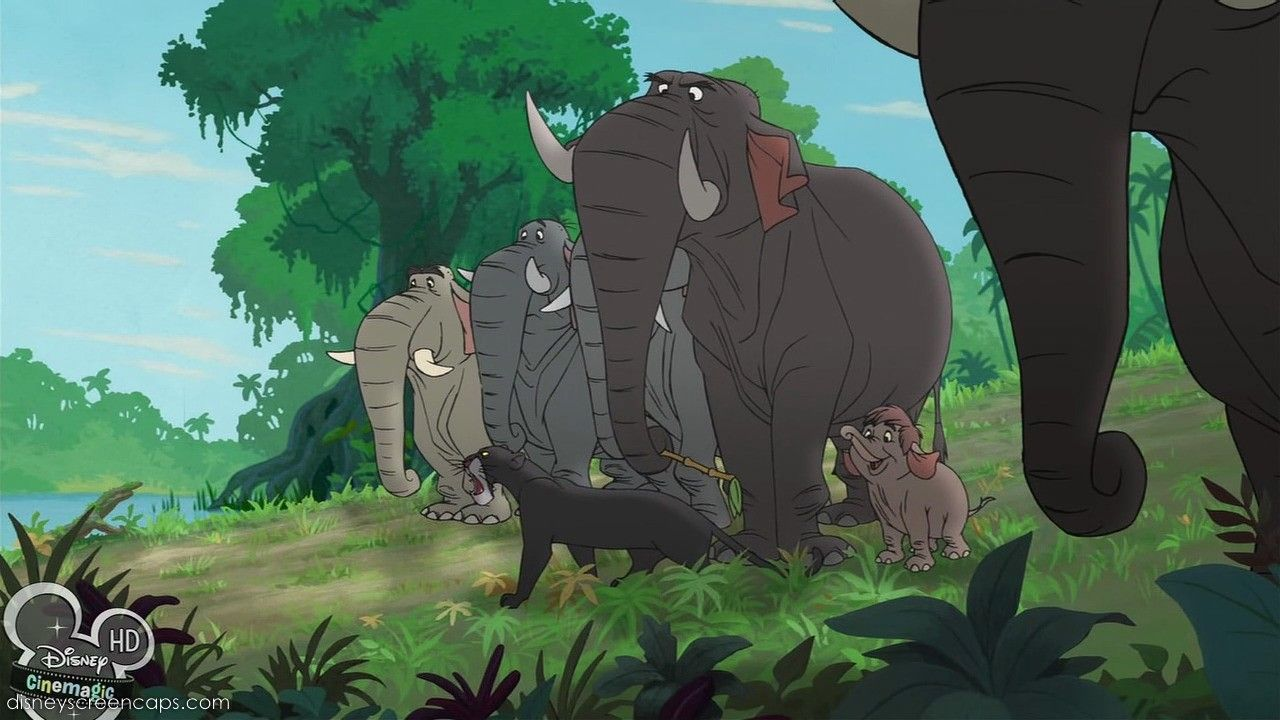 Bagheera and Elephants - The Jungle Book | The Wonderful