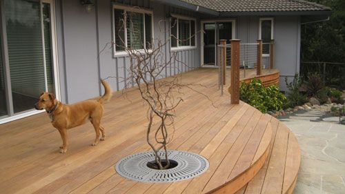 Best Curved Deck Stairs Google Search Curved Deck Deck 400 x 300