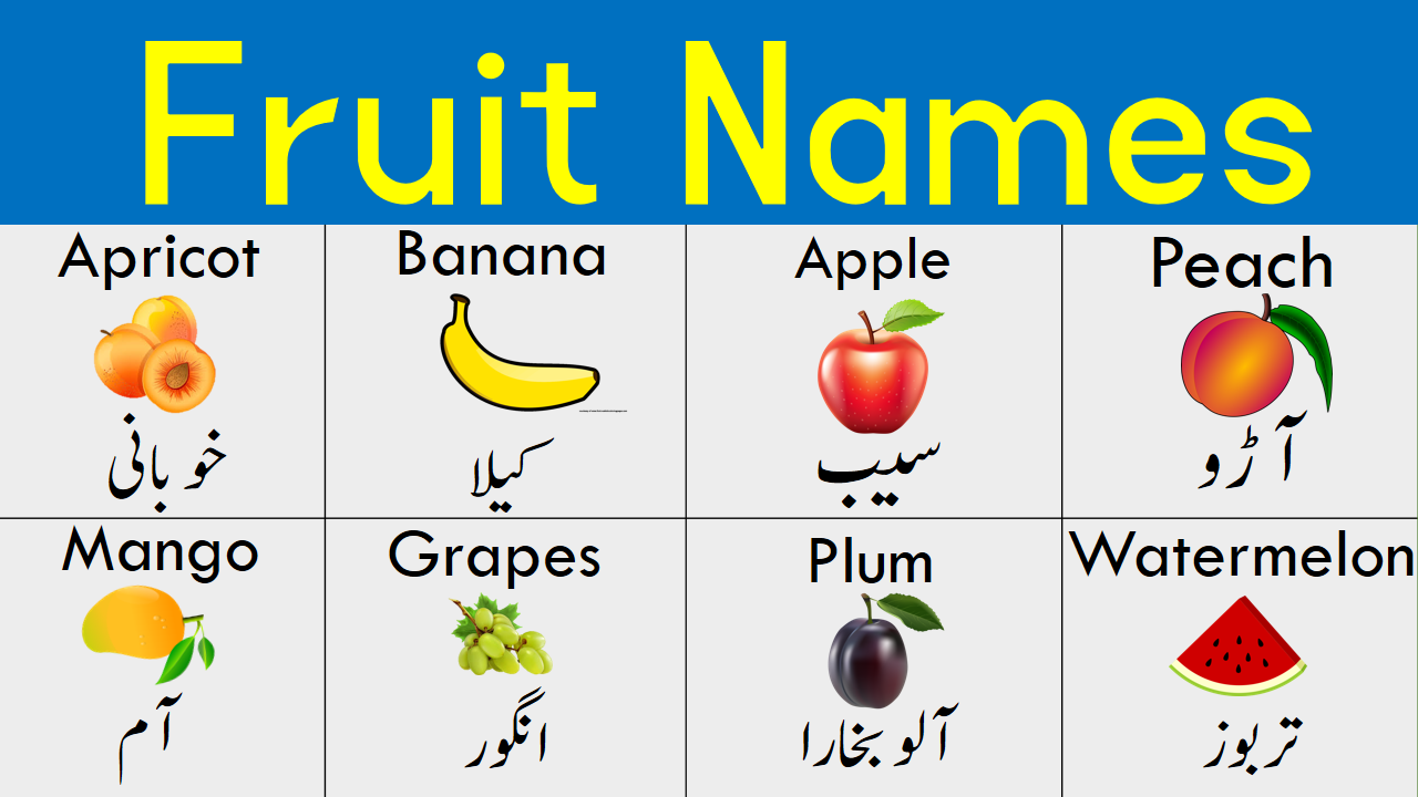 Pin on English to Urdu Vocabulary