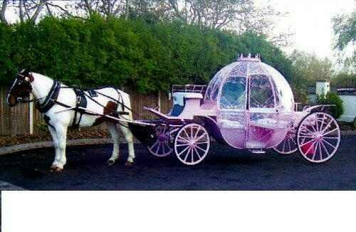 Our Pink Cinderella Gl Wedding Carriage Is Available In Al Uk Locations