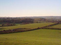 Mill Farm nr Alton - Meat