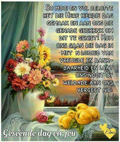 Pin by mercia ogilvie on goeie more pinterest afrikaans evening greetings goeie more afrikaans bird houses good morning mornings blessed week special quotes encouragement m4hsunfo Images