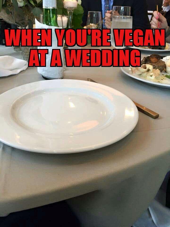 Veganhumor Funny Vegan Humor Vegan Food Pyramid Vegan
