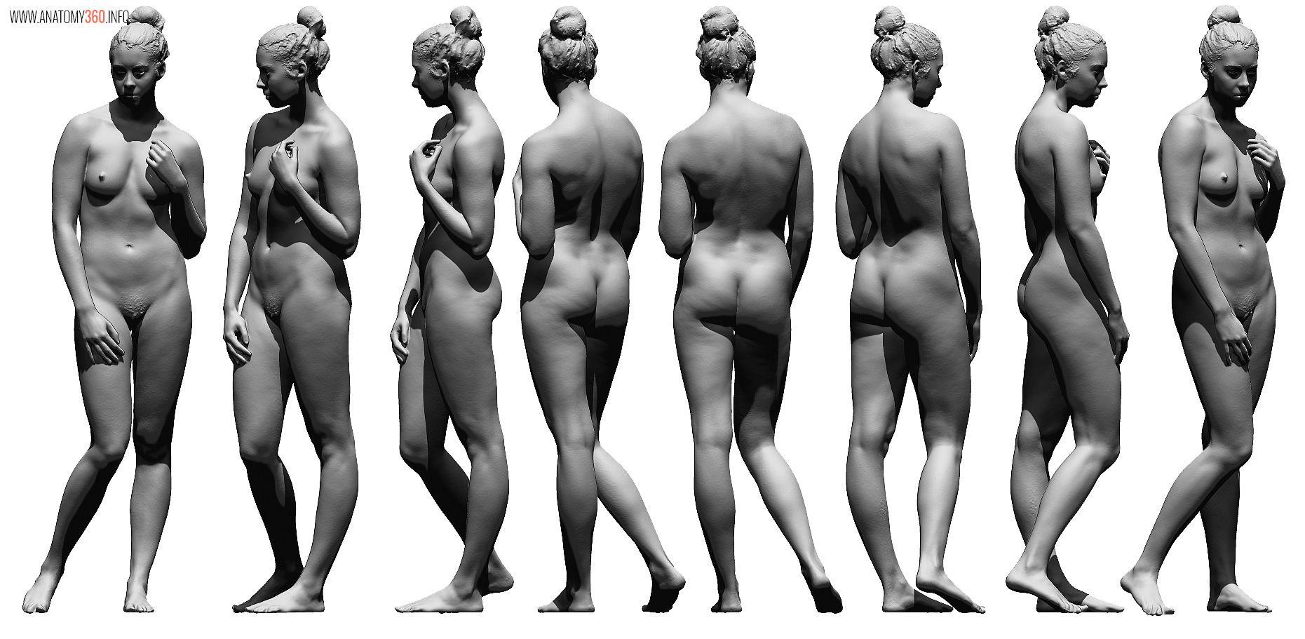 1.jpg (1861×911) | 3d reference - model sheets | Pinterest | Anatomy ...