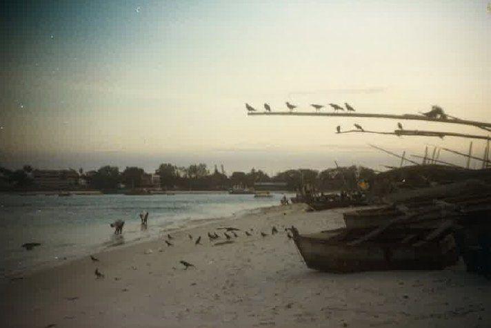 Dar beach