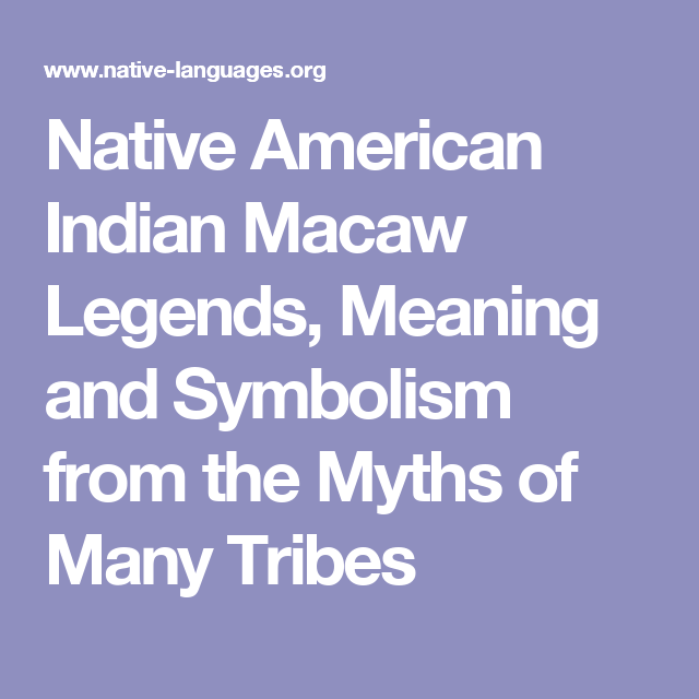 Native American Indian Macaw Legends Meaning And Symbolism From The