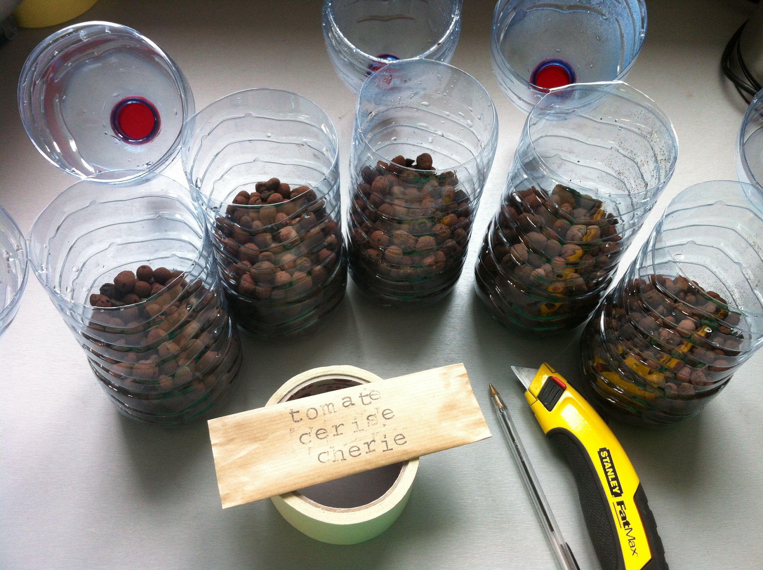 Nouvelle méthode pour mon semis de tomates en bouteille